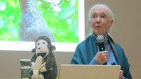 Jane Goodall at UZH