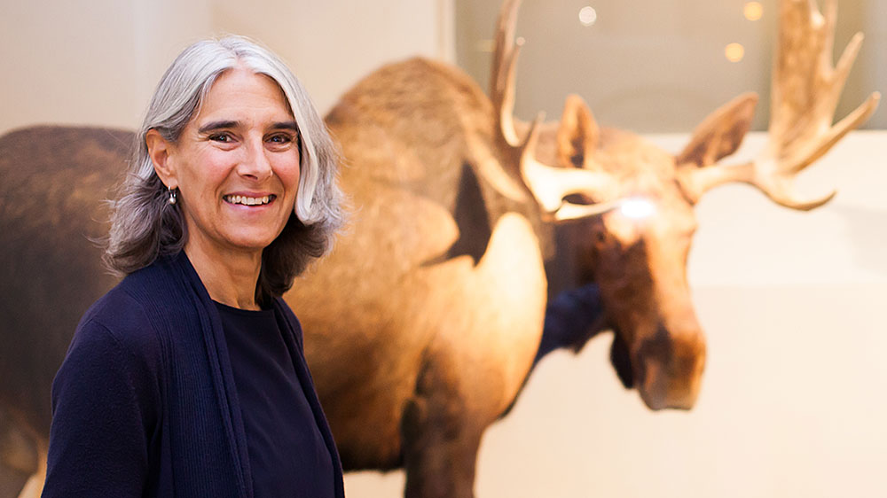 Dr. Isabel Klusman