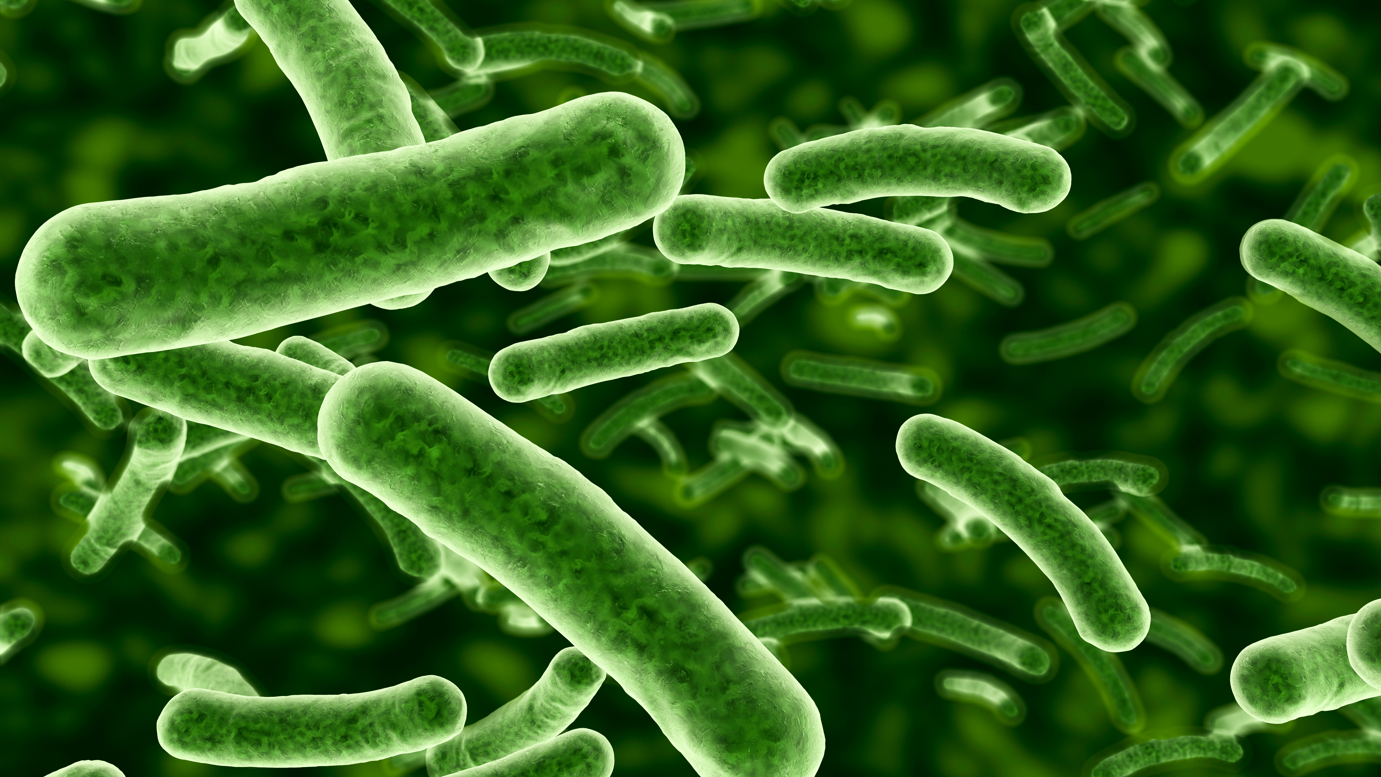 Novel analyses show that bacteria can be used to identify tissue samples. (Picture: iStock.com/Raycat)