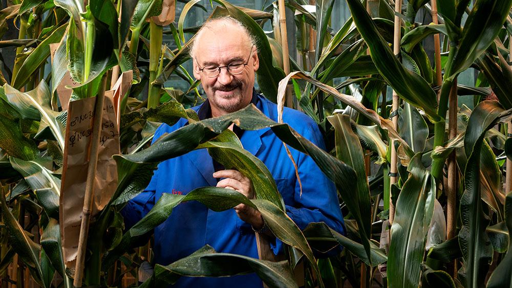 Will die Landwirtschaft mit neuen Zuchtmethoden revolutionieren: Pflanzengenetiker Ueli Grossniklaus. (Bild: Meinrad Schade)